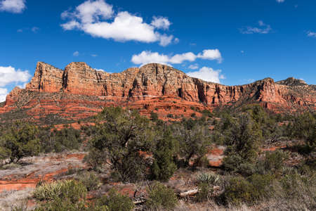 Gibraltar and Lee Mountain rise above the forest, with the landmark Baby Bell Rock in the middle. Located near Sedona Arizona, within the Coconino National Forest.