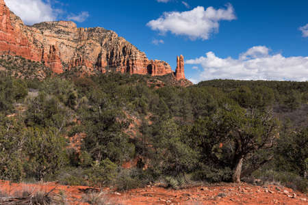 Rabbit Ears Rock Formation can be viewed on the Courthouse Butte Trail.  Rabbit Ears Rock Formation is within Coconino National Forest, Arizona.