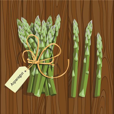 Asparagus vegetable stem. Bunch of fresh green asparagus sprout. Healthy food, dieting, vegetarian salad recipe design.