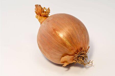 Onion on white  Stock Photo