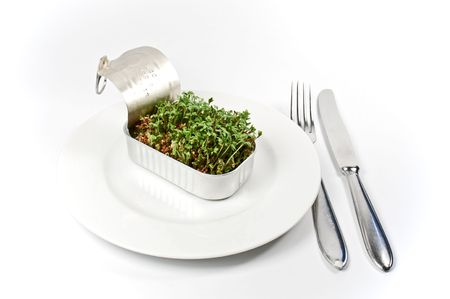 Food of the future photo