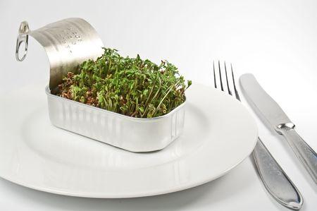 berros: Berros en una lata servido en un plato  Foto de archivo
