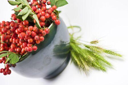 mountain ash: Green bowl with mountain ash