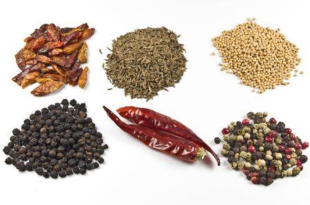 spicery: Spicery on white
