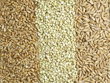 Oat, buckwheat and spelt