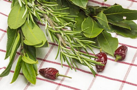 bay leaf: Rosemary, bay leaf and chilli Stock Photo