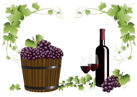 Red wine and grapes Illustration