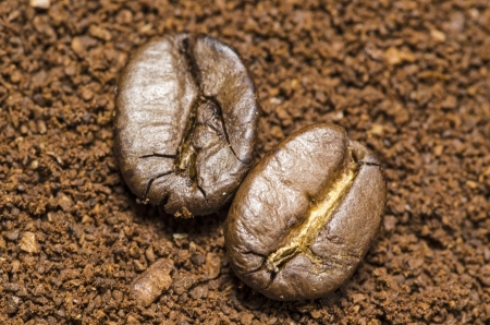 Two coffee beans on ground coffee Stock Photo