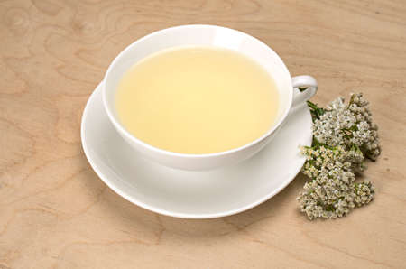 Porcelain cup with herbal tea and fresh yarrow photo