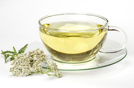 yarrow: Herbal tea and fresh yarrow on white Stock Photo