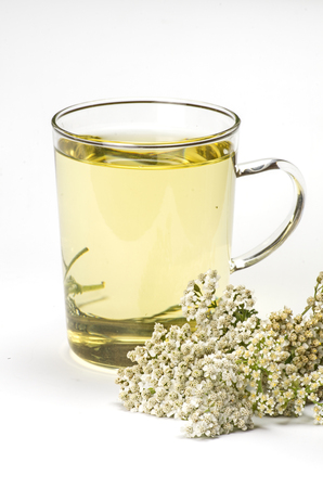 Common yarrow and a glass mug with herbal tea photo