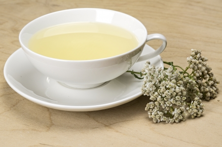 milfoil: White tea cup with herbal tea and yarrow