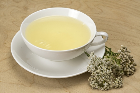 White tea cup with herbal tea and yarrow photo