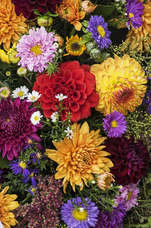 Bouquet in Several colors