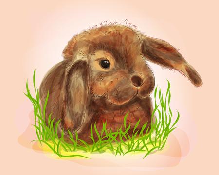 Ilustración de Digitaces del conejito lindo en hierba. Técnica de acuarela Foto de archivo - 70606877