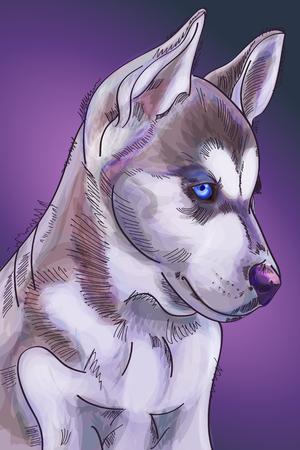 Hand drawn watercolor cute siberian huskies puppy on purple background. Vector illustration eps 10 Vettoriali