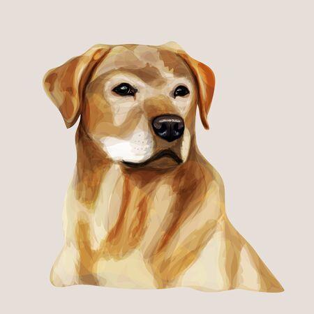 Ilustración digital de raza de perro amarillo Labrador Retriever. Imitación de acuarela Foto de archivo - 70898748
