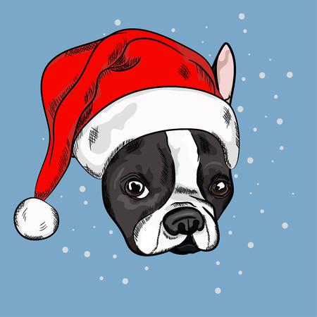 Retrato del dogo francés lindo en sombrero rojo de la Navidad en fondo azul. Ilustración vectorial Papá Noel. Año Nuevo y Navidad. Foto de archivo - 88966507