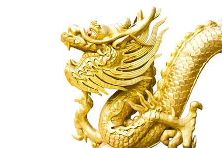 Golden dragon statue on white background Stock Photo - 14211056