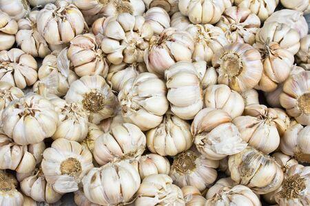 close up of garlic on market Stock Photo - 17437696