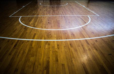 cancha de basquetbol: De cerca la imagen del fondo de la piel del gato