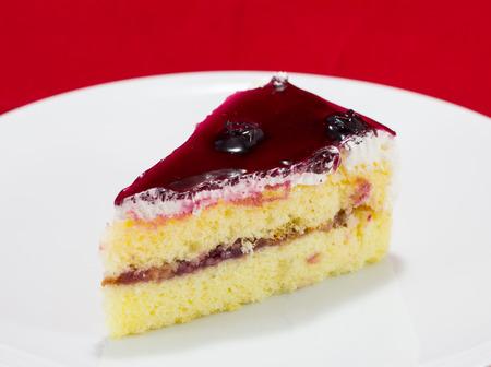 delicious slice of blueberry cake photo