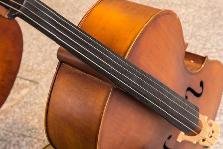 violoncello: Violoncello in music room