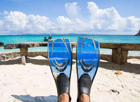 flippers: aletas o aletas en el mar