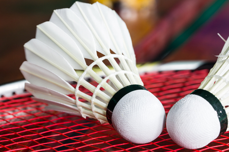 Close up shuttlecock on badminton rackets