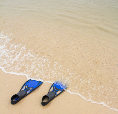 fins: Blue diving fins on  the beach
