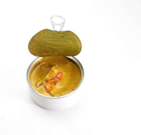 Yellow curry in can photo