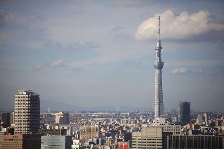 Tokyo arbre ciel