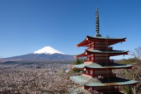 Mont Fuji au printemps, de fleurs de cerisier Sakura