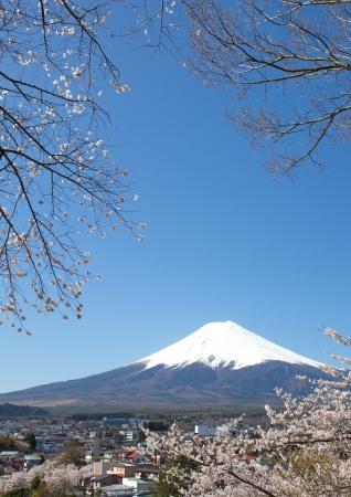 Montagne Fuji au printemps, de fleurs de cerisier Sakura