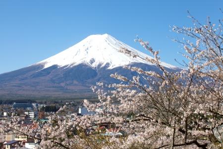 Mountain Fuji in spring ,Cherry blossom Sakura  Stock Photo