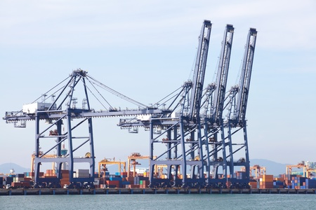 Cargo sea port  Sea cargo cranes photo