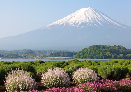winter scenery: Mountain Fuji in spring