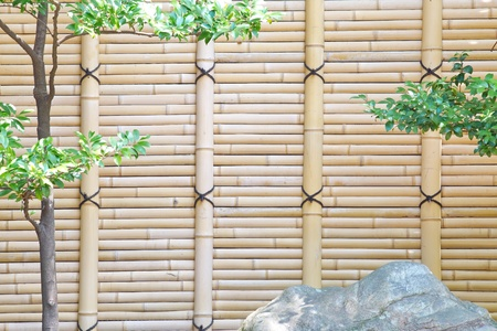 bamboo fence in Japanese garden photo
