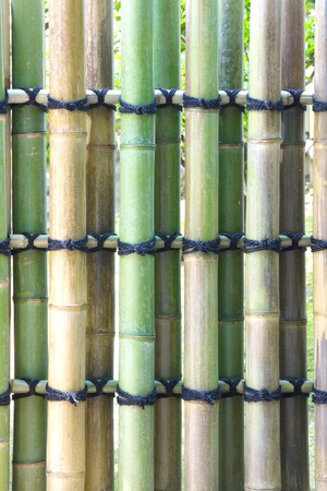 good quality: Good quality natural bamboo texture  Stock Photo