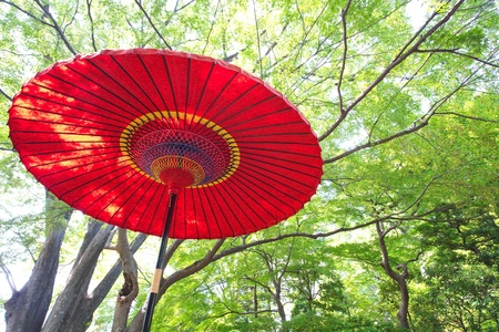 Japonaise parapluie rouge photo