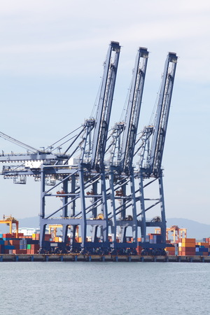 Industrial Cargo Cranes in Industrial Port photo