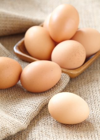 fresh brown eggs  Stock Photo - 23719615