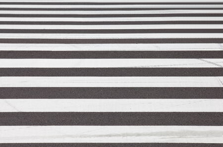 zebra traffic walk way  photo