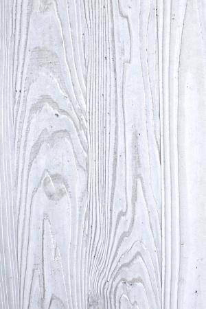 흰 나무 배경