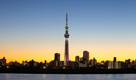 Tokyo city view and tokyo skytree with Mt Fuji , sihouette skyline
