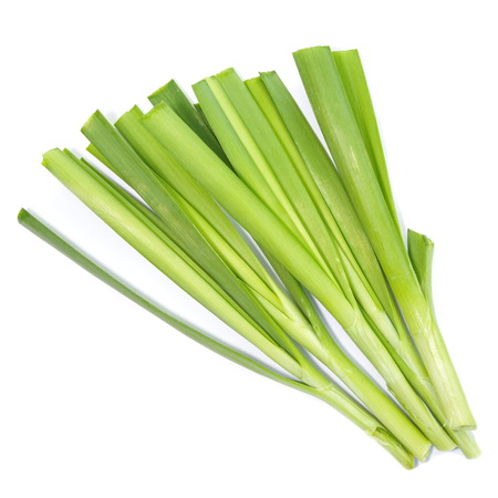 fresh green leek vegetable on white background