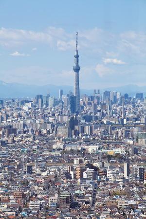 Tokyo vue sur la ville et Tokyo arbre ciel