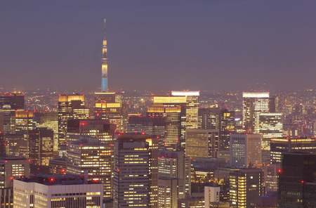 Tokyo cityscape and tokyo sky tree at night