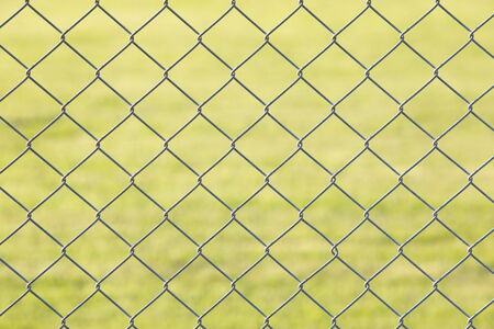 Metal mesh fence and green grass at background