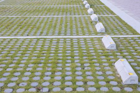 Outdoor car parking design concrete block with green grass